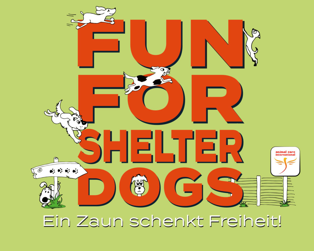 FUN FOR SHELTER DOGS - Ein Zaun schenkt Freiheit!