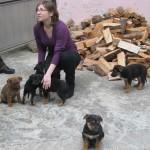 AIDA and 5 babies.