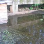 Überflutungen bei Goga