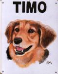 Timo-