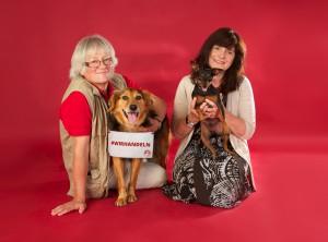 #wirhandeln_aci-dogs